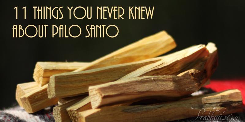 About Palo Santo