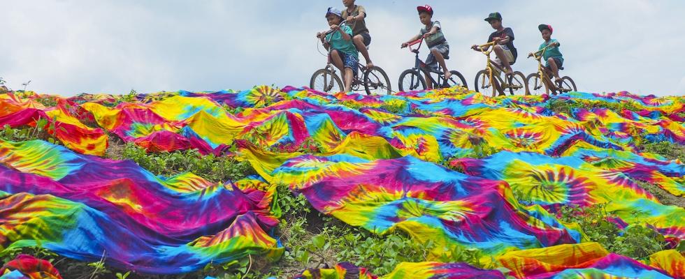 50 des photos les plus colorées prises en 2019