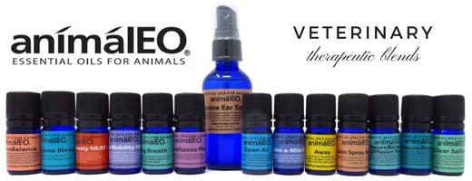 Les mélanges d'huiles essentielles animalEO sont sans danger pour les chiens, les chats et d'autres animaux par le Dr Melissa Shelton, vétérinaire intégratrice et holistique