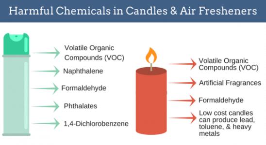 Dans quelle mesure les bougies parfumées et les assainisseurs d'air autour de vos animaux domestiques sont-ils sûrs?