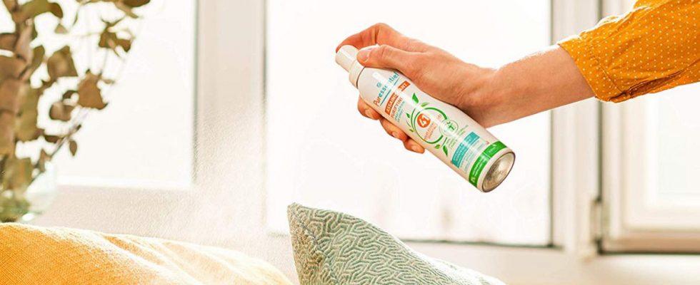 Meilleur assainisseur d'air: 14 façons de rendre votre maison odorante