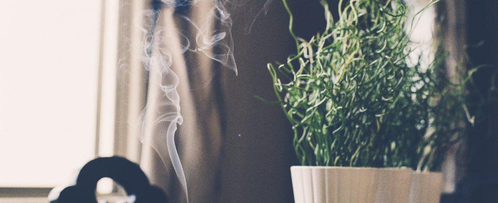 5 marques d'encens entièrement naturelles pour la méditation, le yoga ou tout simplement parce que Eco-Chick