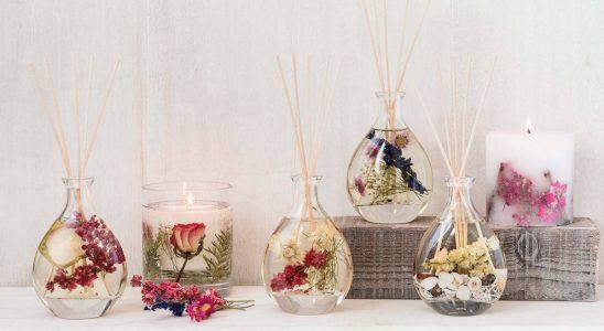Meilleurs diffuseurs à roseaux: 16 achats pour donner à votre maison une odeur incroyable