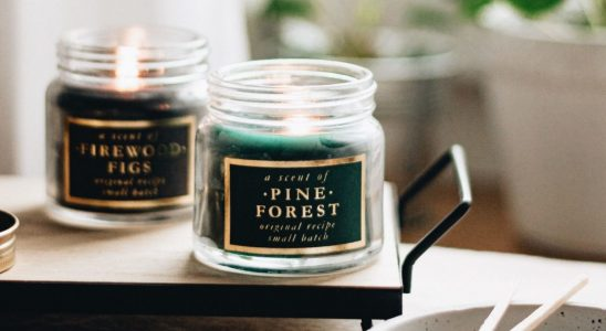 The Best Cruelty-Free Fall Scents for Your Home