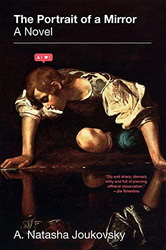 Le Portrait d'un miroir : un roman