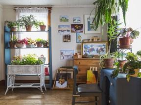 Le marché sans argent de Montréal est un paradis pour les chasseurs de bonnes affaires où vous pouvez échanger des plantes, des livres, des vêtements et tout ce que vous avez dans la maison.