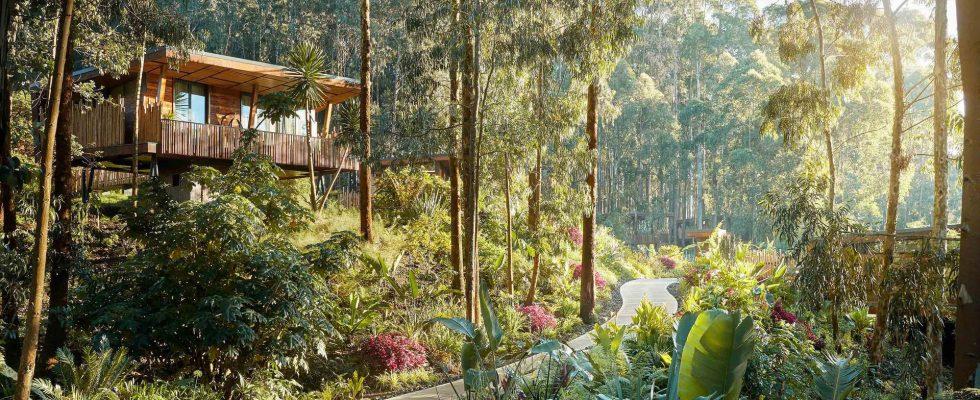 Pourquoi le Rwanda est une destination de lune de miel vraiment spectaculaire